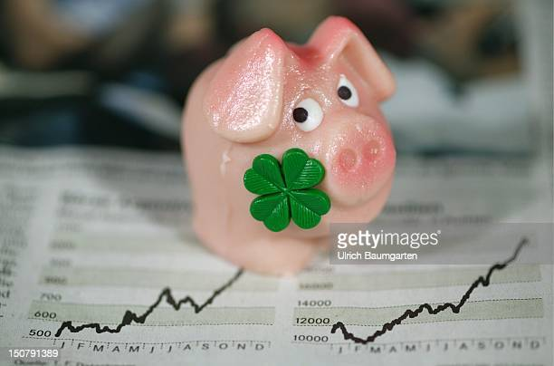 Fairy pig with charts of the stock exchange