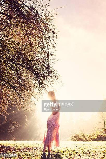 Fee Prinzessin in Morgen Nebel und Sonne