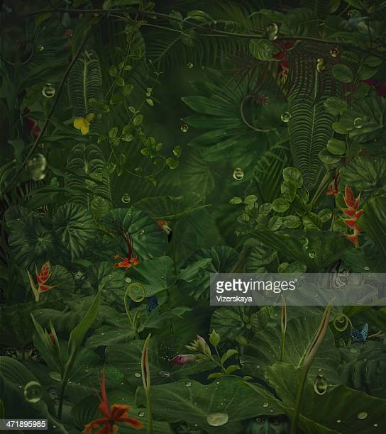 fairy rainy jungle with hide wild animals