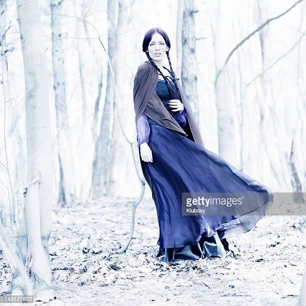 fairy tale lady - blauwe jurk stockfoto's en -beelden