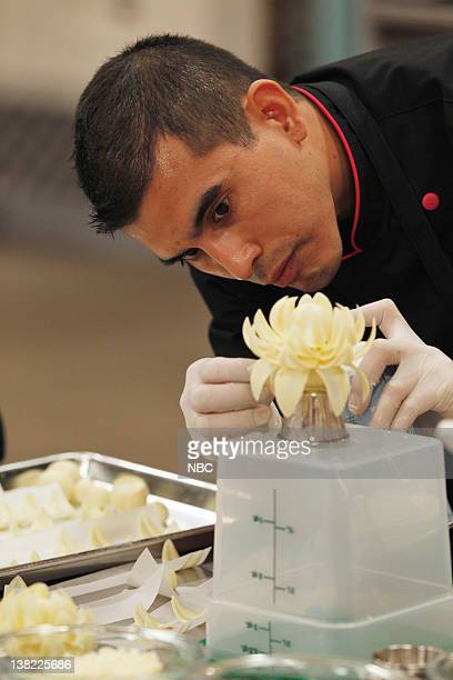 3 Top Chocolate Lotus Flower Pictures Photos Images Getty Images