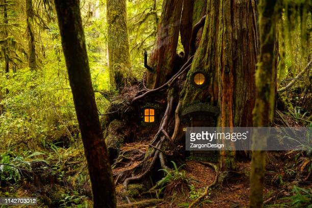 fairy tree house - fairy stock pictures, royalty-free photos & images