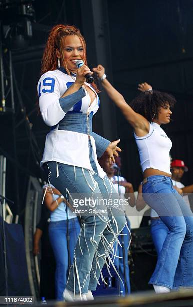 Faith Evans during Faith Evans Performs in Kansas City on June 9, 2002 at Verizon Wireless Amphitheater in Bonner Springs, Kansas, United States.