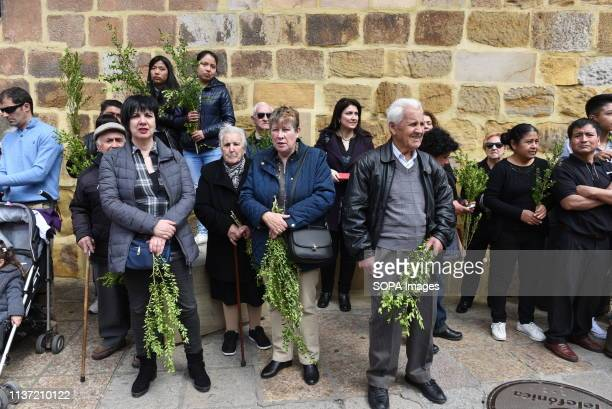 Faithful are seen holding olive twigs during the procession of 'Domingo de Ramos' in Soria north of Spain Palm Sunday commemorates the triumphant...