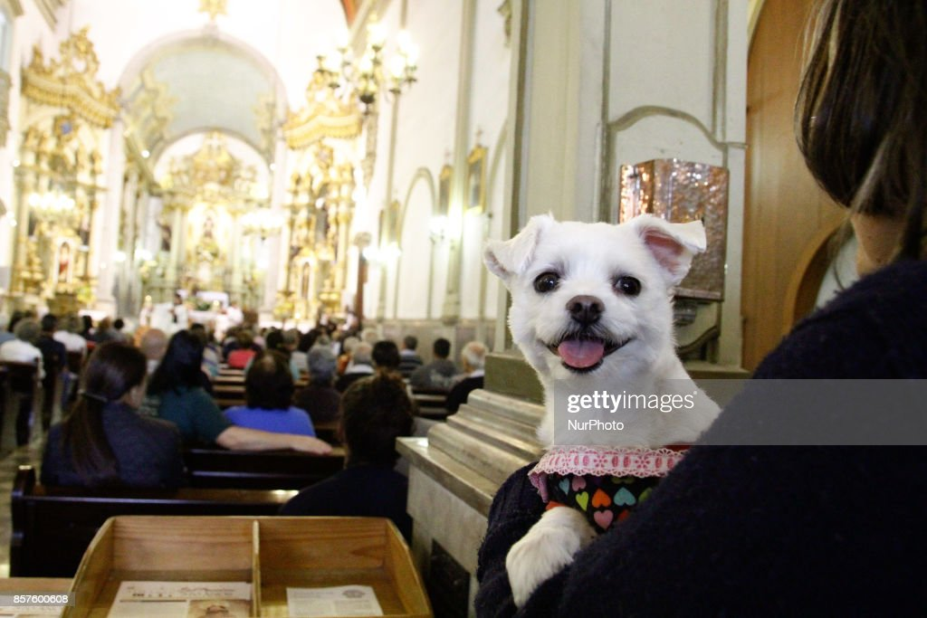 Faithfuls take their pets for Mass celebrated in the parish of St. Francis of Assisi, central region of São Paulo, Brazil, on Wednesday, 04, a day dedicated to the patron saint of animals and the environment. October 4, 2017.