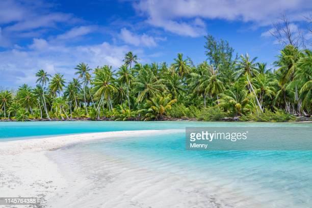 fakarava atoll sandbank and beach, french polynesia - tahiti stock pictures, royalty-free photos & images