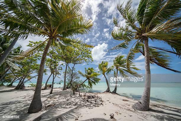 Fakarava Atoll Teahatea Motu Islet French Polynesia