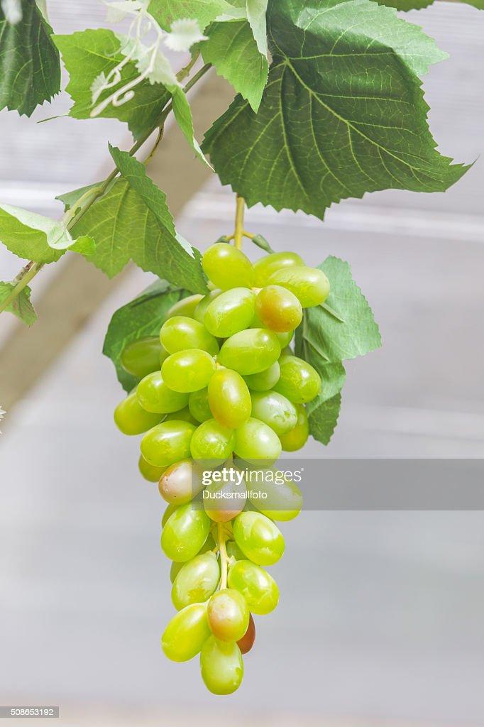 fake grapes : Stock Photo
