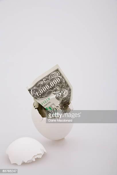 A fake million dollar banknote in an eggshell