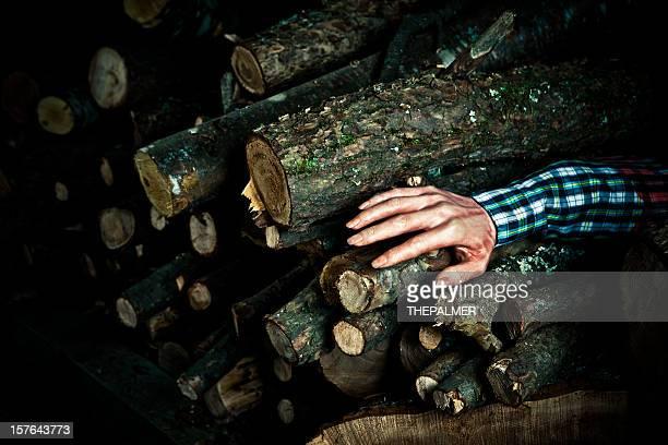 fake mutilated arm between firewood logs
