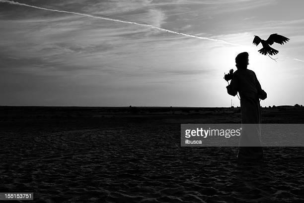 Falcon trainer in the desert against sun