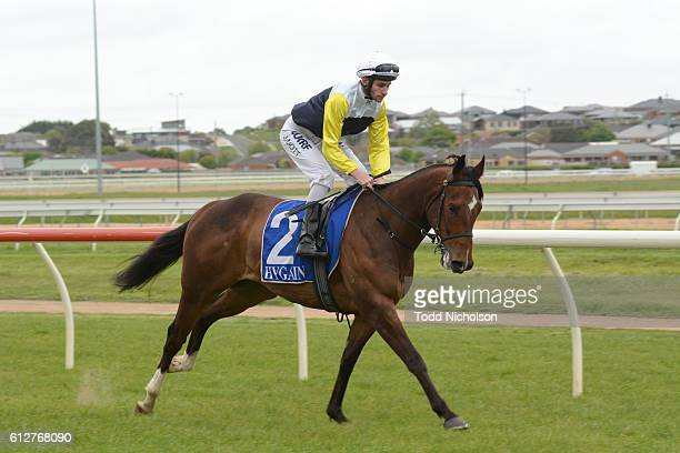 Falcool ridden by Jamie Mott goes out for tab.com.au SV Three-Years-Old BM64 Handicap at Warrnambool Racecourse on September 25, 2016 in Warrnambool,...