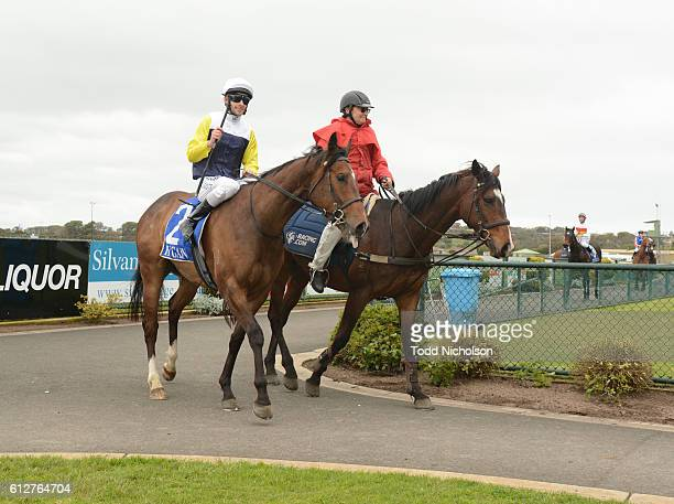 Falcool ridden by Jamie Mott returns after tab.com.au SV Three-Years-Old BM64 Handicap at Warrnambool Racecourse on September 25, 2016 in...