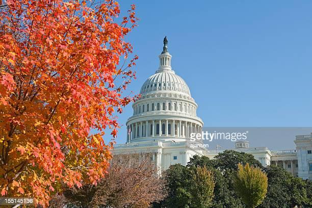 fall 2011 at Capitol hill Washington DC