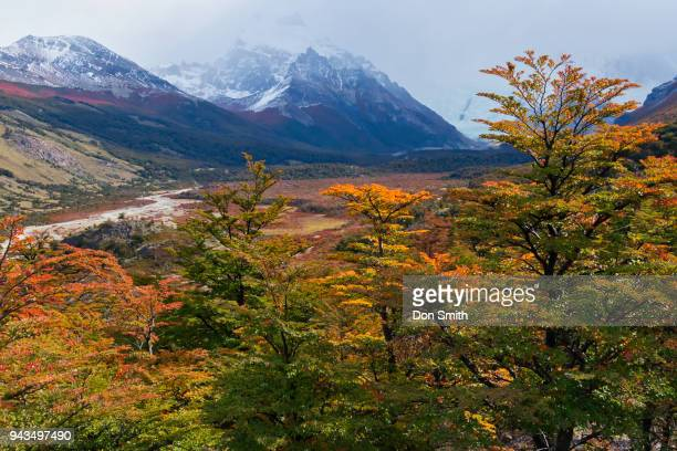 fall and the andes range - don smith imagens e fotografias de stock