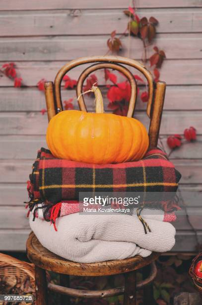 fall at country house. Seasonal rustic decorations with cozy blankets, pumpkins, fresh apples and...