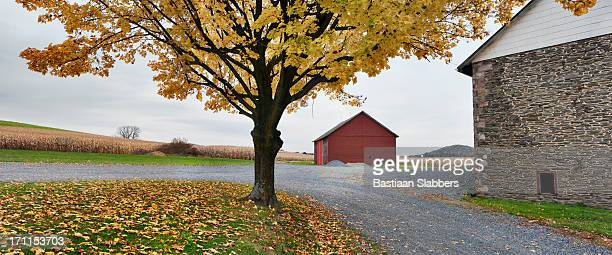 fall at rural pennsylvania farm - basslabbers, bastiaan slabbers stock pictures, royalty-free photos & images