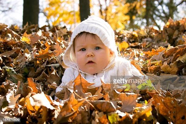Fall Baby