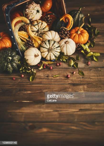 Fall background with pumpkin assortment still life
