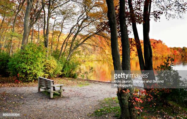 Fall Bench at Southard's Pond in Babylon, Long Island