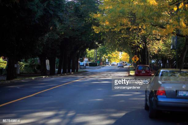 Fall Canopy Over Small Town Fort Langley British Columbia