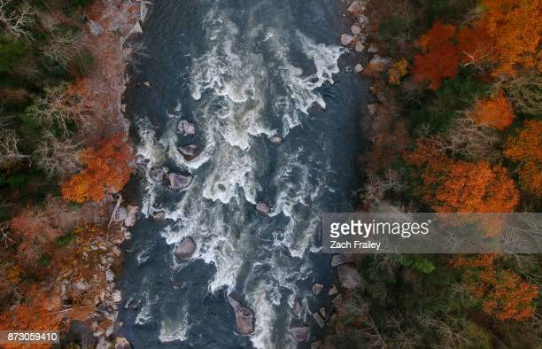 fall color along the rapids - whitewater rafting stock pictures, royalty-free photos & images