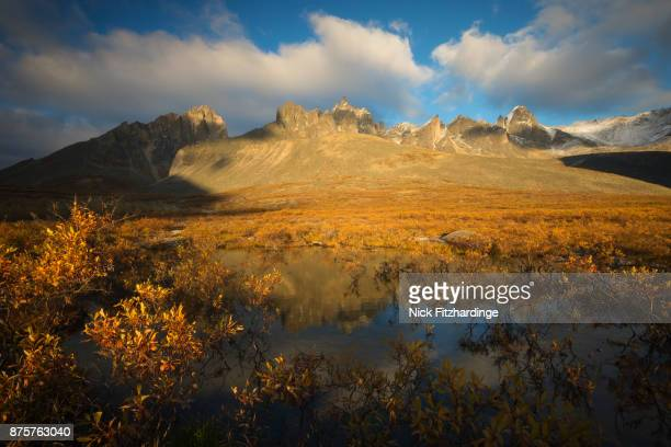 Fall color at sunset in the tundra below Mount Monolith, Tombstone Territorial Park, Yukon Territory, Canada