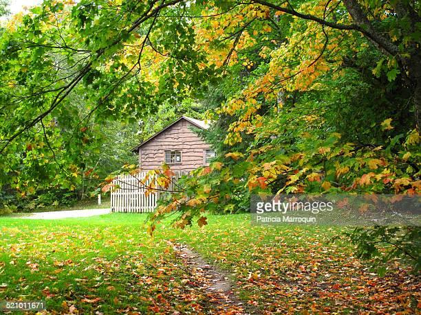 Fall color frames a building in Tahquamenon Falls State Park in the Upper Peninsula of Michigan.