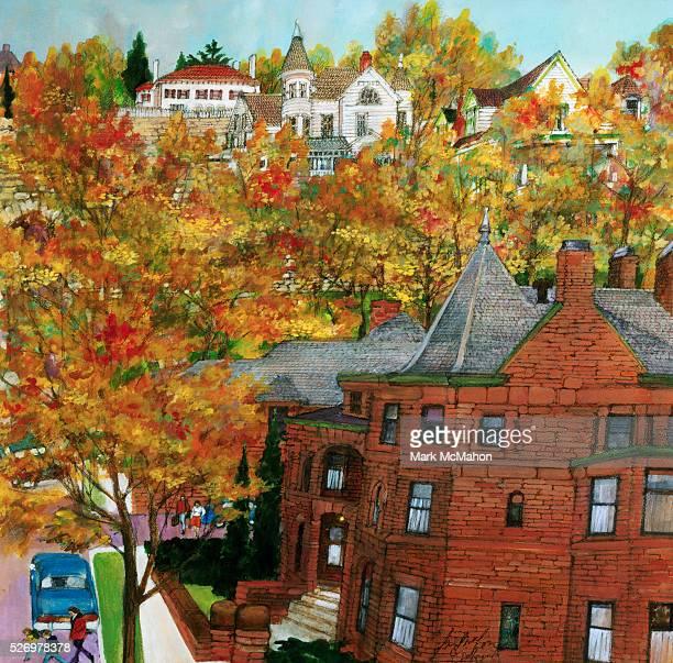 Fall Color on Steep Hillside