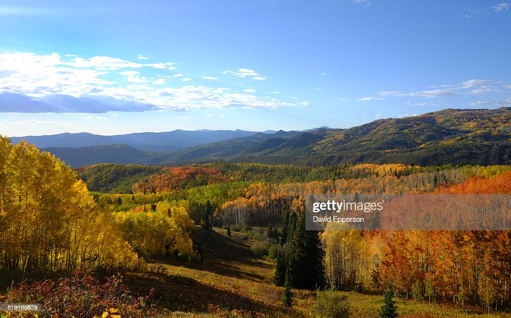 fall colors in Colorado mountains : Stock Photo