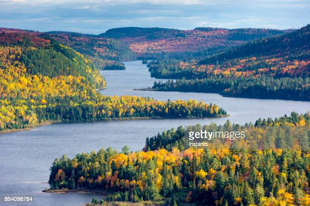 fall colors in la mauricie national park with wapizagonke lake and its île aux pins (pine island), in québec, canada. - parco nazionale foto e immagini stock