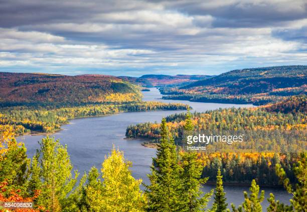 fall colors in la mauricie national park with wapizagonke lake and its île aux pins (pine island), in québec, canada. - territorio selvaggio foto e immagini stock