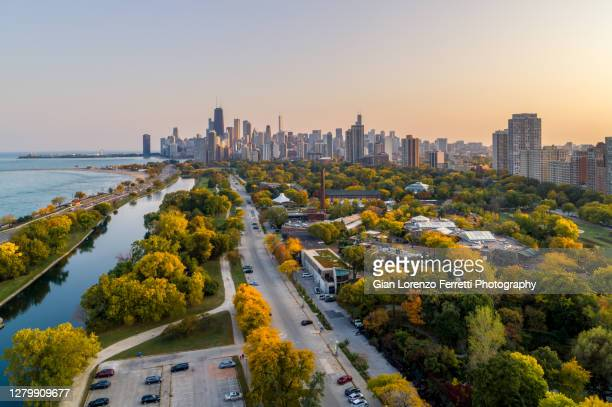 fall colors in lincoln park - chicago - chicago illinois stock pictures, royalty-free photos & images