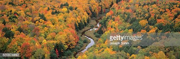 fall colors in porcupine mountains - parque estatal de porcupine mountains wilderness fotografías e imágenes de stock