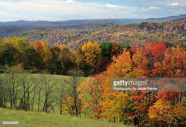 Fall colors in the mountains of West Virginia