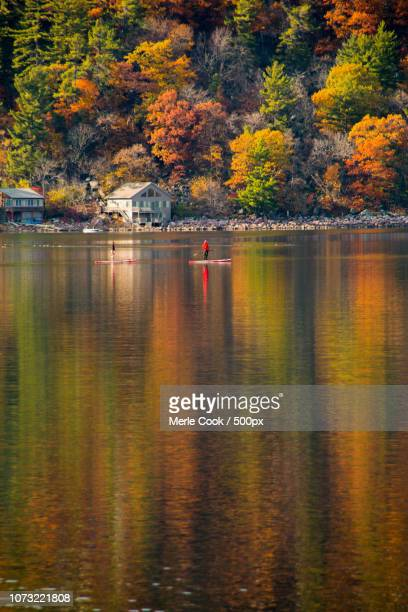 fall colors in wisconsin. - iron_county,_wisconsin stock pictures, royalty-free photos & images
