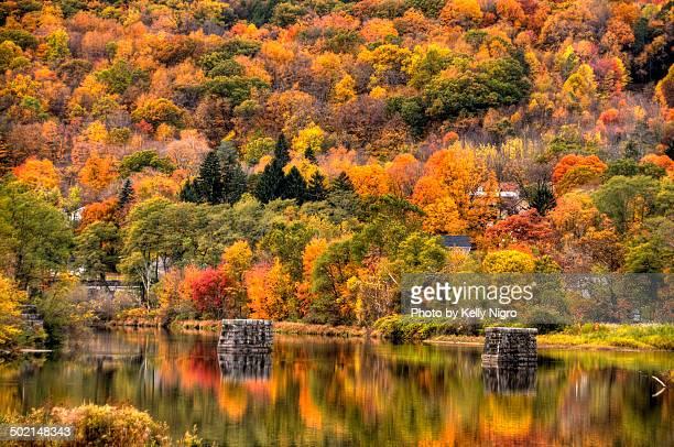 Fall Colors on the Farmington River
