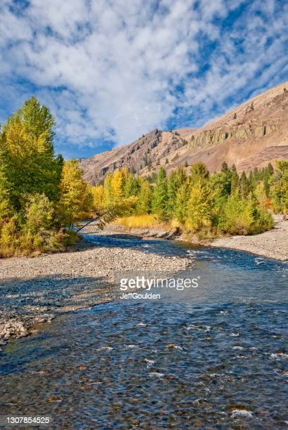 fall colors on the naches river - jeff goulden stock pictures, royalty-free photos & images