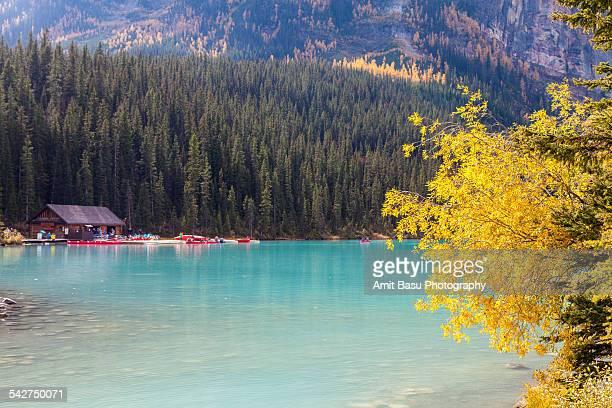 Fall colors over Lake Louise, Banff, Canada