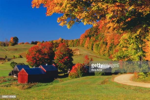 Fall Colors Surrounding Vermont Farm