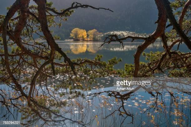 Fall colours at Lake Abant, Bolu, Turkey