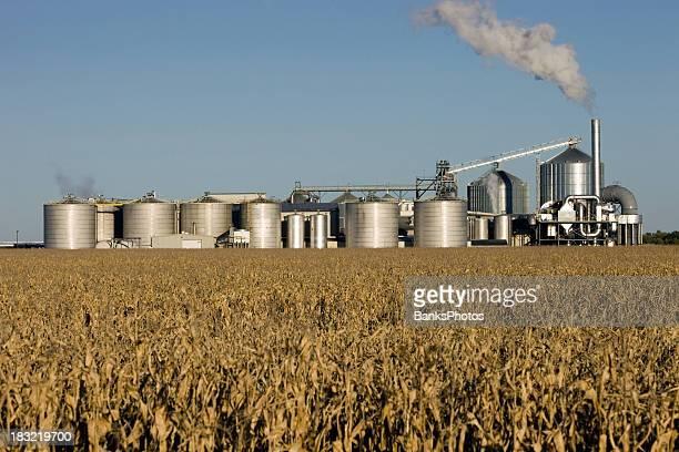 エタノール Biorefinery Cornfield 秋を背景に