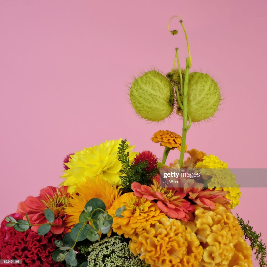 Fall Flower Bouquet Stock Photo Getty Images
