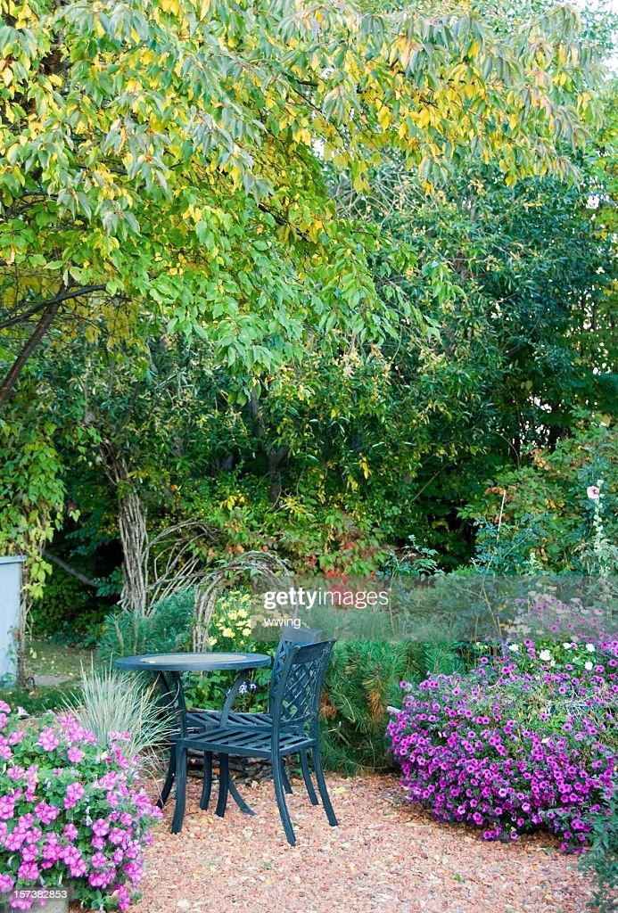 Fall Flower Garden : Stock Photo