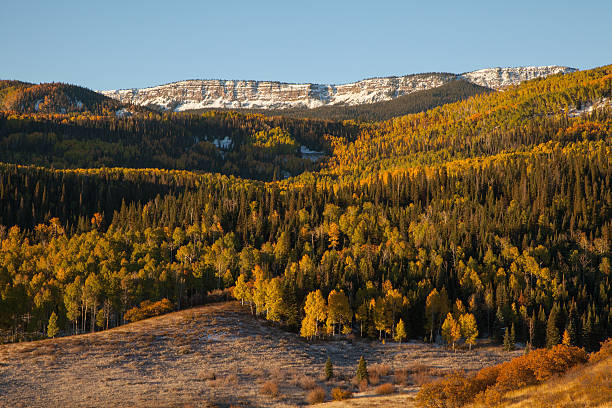 Fall foliage and snow-dusted peaks, Colorado
