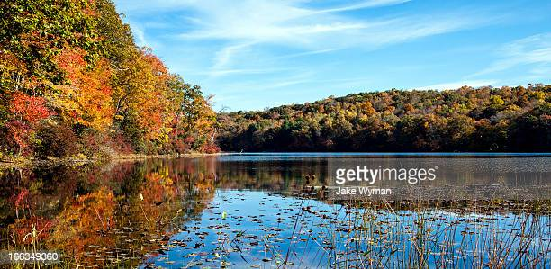 Fall foliage at Norwich Pond, Nehantic State Forest in Connecticut.