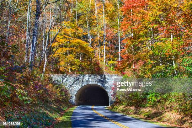 fall foliage @ blue ridge parkway - blue ridge parkway stock pictures, royalty-free photos & images