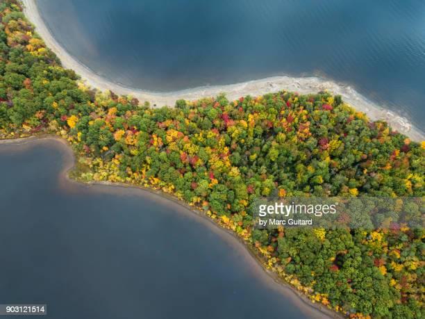 fall foliage, grand lake, new brunswick, canada - new brunswick canada stock pictures, royalty-free photos & images