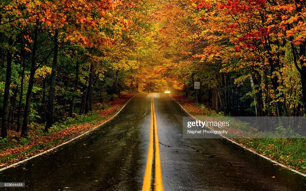 Fall Foliage in Vermont : Stock Photo