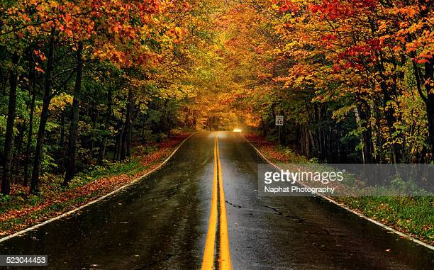fall foliage in vermont - cambridge massachusetts stock pictures, royalty-free photos & images